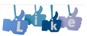 השקת פייסבוק לארגון